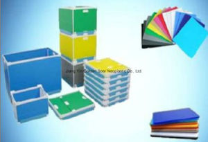 PP/PE Foldable Box pictures & photos