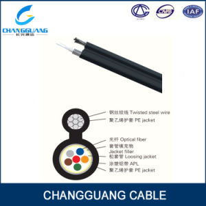 Professional Optical Fiber Cable Manufacturing Factory Gyxtc8s for Communication Network