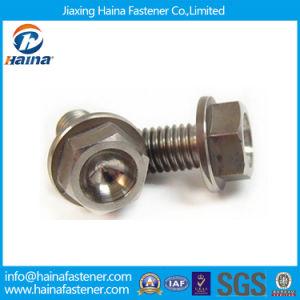 Manufacturer Gr5 Titanium Hex Flange Bolts pictures & photos