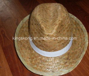 Promotion Straw Boater Hat Custom Straw Hat Blank Wholesale pictures & photos