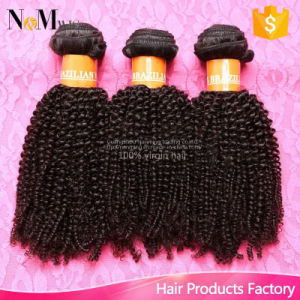 3/4 Bundle Deals Adorable Hair Weave Traders Dropshipping 100 Indian Afro Kinky Curly Human Hair pictures & photos