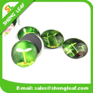 Promotional Home Decorative Glass Fridge Magnets pictures & photos