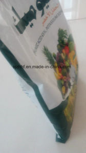 Maize/ Flour/ Fertilizer/Feed Bag PP Woven Bag for Packaging pictures & photos