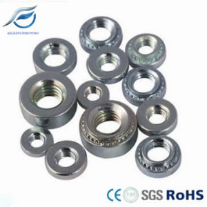 Pem Fasteners Stainless Steel Clinch Nut pictures & photos