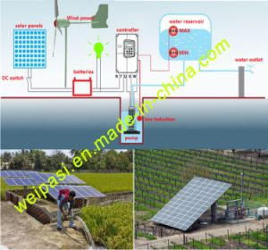 Solar irrigation, Wind power irrigation, Solar Pumping System, Night lighting, 1KW, 1.5KW, 2kw, 3kw, 5kw, 7.5kw pictures & photos