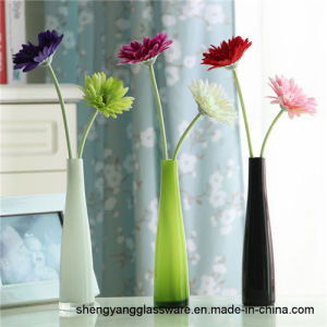 Hot Sell Fashion Glass Vase Home Furnishing Decor Table Flower Planting Glass Craft pictures & photos