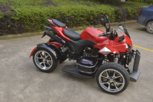 Jinyi Hot Selling 250cc EEC Approved ATV (JY-250A) pictures & photos