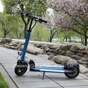 Popular Foldable Vehicle Min Electric Scooter / E-Skateboard (QX-1001) pictures & photos