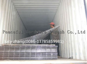 China Suppier for Concrete Reinforcment Wire Mesh pictures & photos