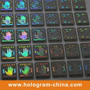 2D/3D Security Black Serial Number Hologram Sticker pictures & photos