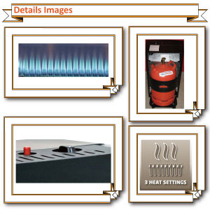 CE Certificate Blue Flame Gas Heater pictures & photos