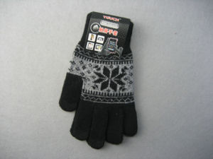 10g Polyester Liner Pattern Fashion Work Glove pictures & photos