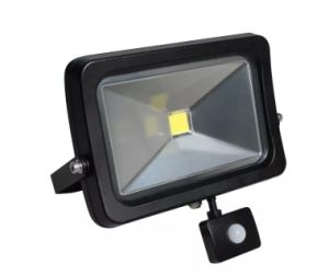 New Design 50W Outdoor Spotlight COB LED Flood Light pictures & photos