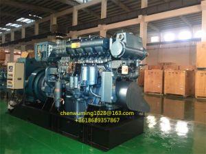Weichai 170 Diesel Engine Air Starter Tmy9qdbb - Chinese Air Starter pictures & photos