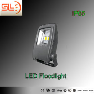 IP65 LED Floodlight with CE EMC RoHS pictures & photos