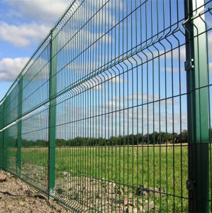 Galvanized and PVC Coated Wire Mesh Fence Hot Sale pictures & photos