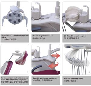 Ce & FDA Approved Gladent Dental Chair with Rotatable Unit Box pictures & photos