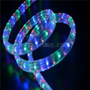 5 Wire Flat LED Rope Light with UL Ce&RoHS pictures & photos