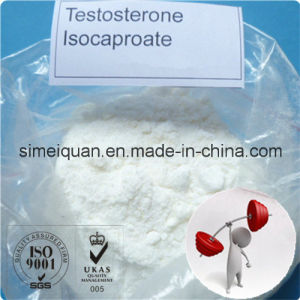 Anabolic Androgenic Steroids Testosterone Isocaproate for Boduybuilding (15262-86-9) pictures & photos