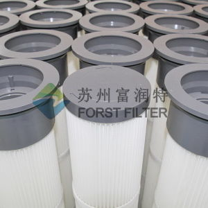 Forst Polyester Filter Element pictures & photos