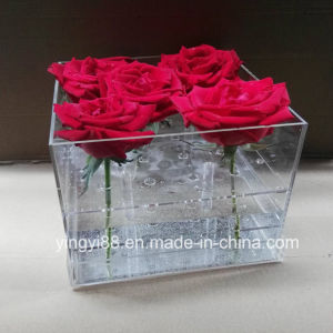 New 36hole Acrylic Flower Display Case pictures & photos
