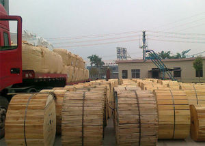 Fiber Cable Manufacturer Single -Mode and Multi-Mode Aerial GYTS pictures & photos