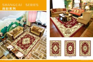Wilton Machine Made PP Modern Carpet pictures & photos