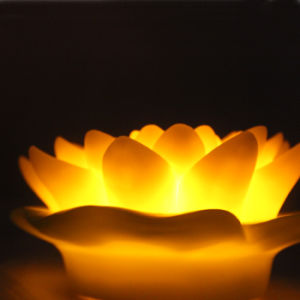 Beautiful Romantic Floating LED Lotus Flower Light with Amber Color pictures & photos