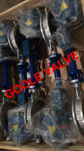 Wafer Triple Eccentric Metal Seat Electric Regulating Butterfly Valve (GAD973W) pictures & photos