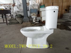 Sanitary Ware Two-Piece Ewc Washdown/Gravity Flushing S-Trap 220mm Water Side in pictures & photos