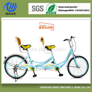 Powder Coating Used in Bicycle and Automobile pictures & photos