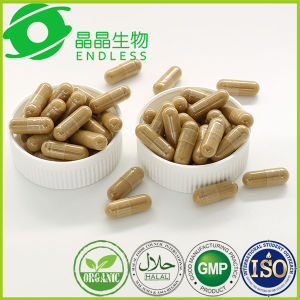 Best Herbal Supplement Extraction Silymarin Powder Milk Thistle Extract Capsule pictures & photos