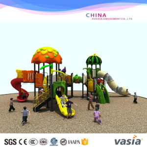 Vasia Park Amusement Equipment Outdoor Playgroundvs2-3044A pictures & photos