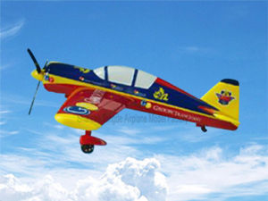 Yakovlev Yak-54 Model Helicopter Airplane Model pictures & photos