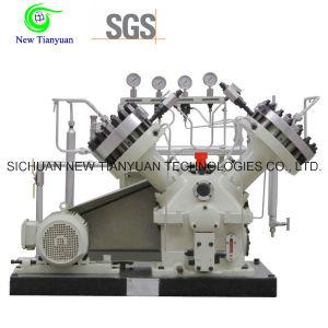 Nitrogen Gas Diaphragm Oil Free Air Compressor pictures & photos