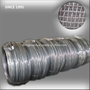 Low Price Woven Screen Wire pictures & photos