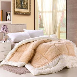 Super Soft Fleece and Velvet Quilt Warm Winter Quilt pictures & photos