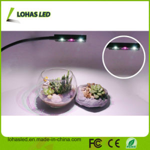 3W Full Spectrum LED Grow Light New Design USB Flexible Table Lamp with Clip LED Grow Light for Plants Growing pictures & photos