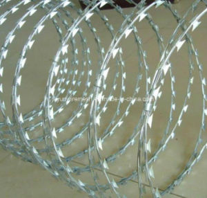 Razor Barbed Wire/Razor Wire/ Stainless Steel Razor Wire pictures & photos