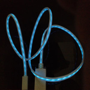 0.8meter Light Moving for iPhone USB Cable with LED pictures & photos