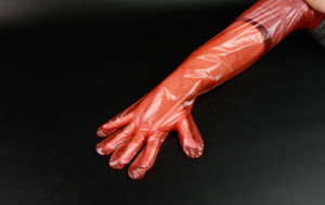 Non Latex Obstetric Gloves Veterinary Gloves pictures & photos