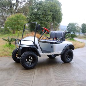 Ce Certification Customized 2 Passenger Electric Hunting Golf Cart for Holiday Village pictures & photos