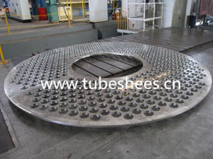 Tube Sheet for Pressure Vessels pictures & photos