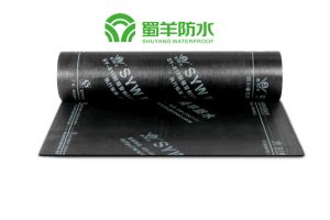 Root Resisted APP Waterproof Membrane with PY Reinforcement Sand Surface pictures & photos