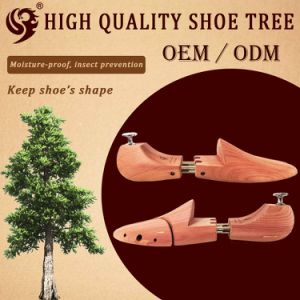 Good Quality Durable Shoe Tree Cedar pictures & photos