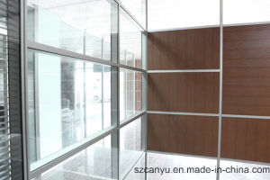 Clear Glass Office Partition with Wall ISO BV Ce Cetificate pictures & photos