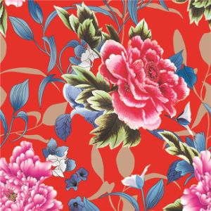 Ranie Cotton Fabric Printed for Garment (DSC-517) pictures & photos
