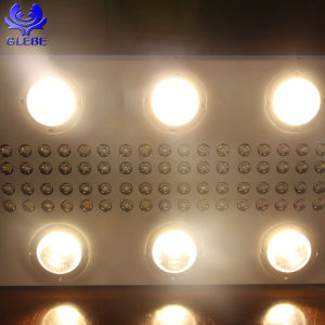Plant Lamp Cxb 3590 CREE LED Grow Light Full Spectrum pictures & photos