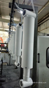 3000 Psi Hydraulic Cylinder for USA pictures & photos