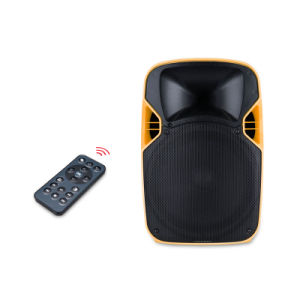 12 Inches Portable Consumer Projection Sound Speaker with Battery pictures & photos
